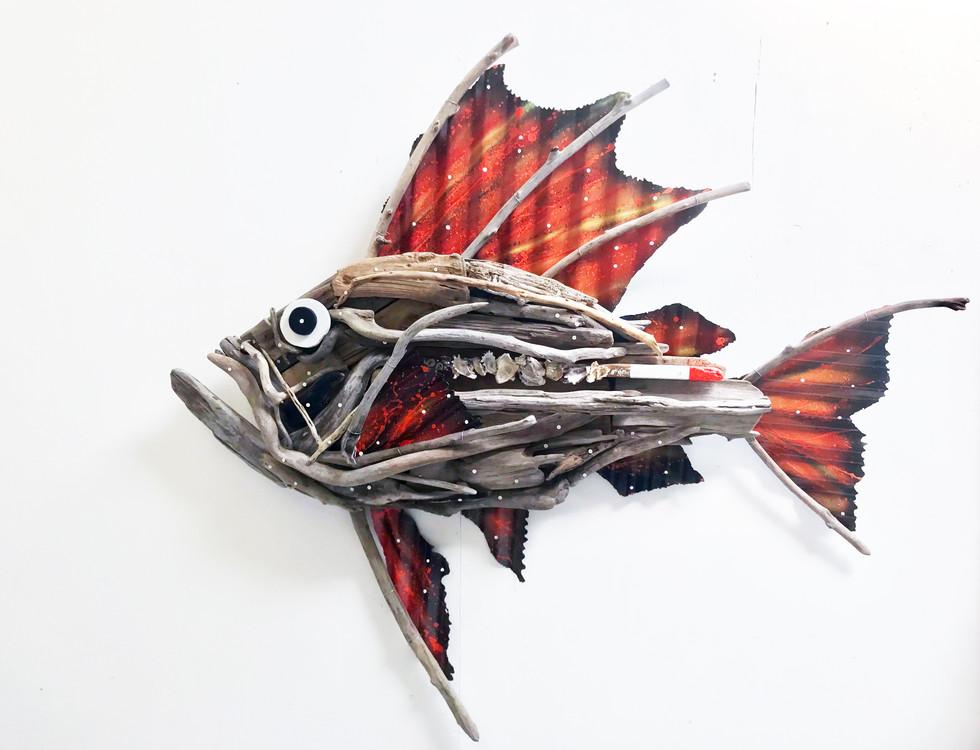 Wilcox Driftwood Fish