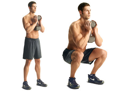 Anatomy And Benefits Of Squats