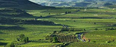 Rioja_edited.jpg