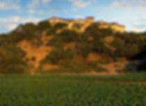 Silverado-Vineyards_Winery-.jpg