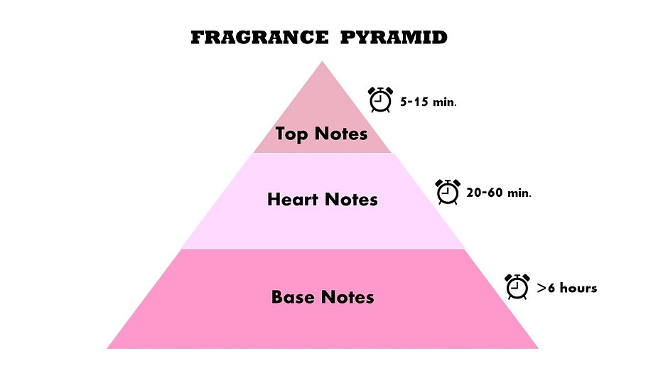 Fragrance%20Pyramid_edited.jpg