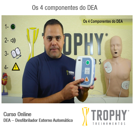 Os 4 componentes do DEA