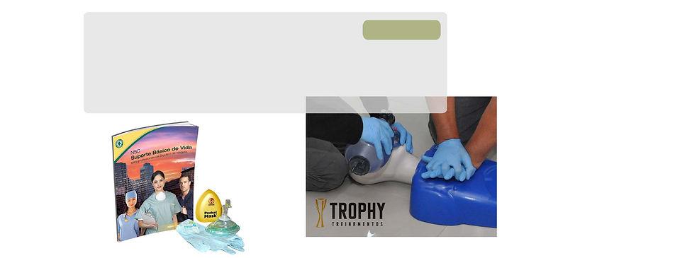 SBV Pro suporte básico de vida profissional profissionais saúde e resgate NSC internacional