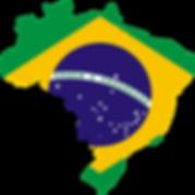 Trophy Treinamentos Brasil.png