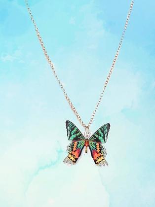 Colar borboleta