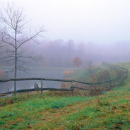 Country Scene