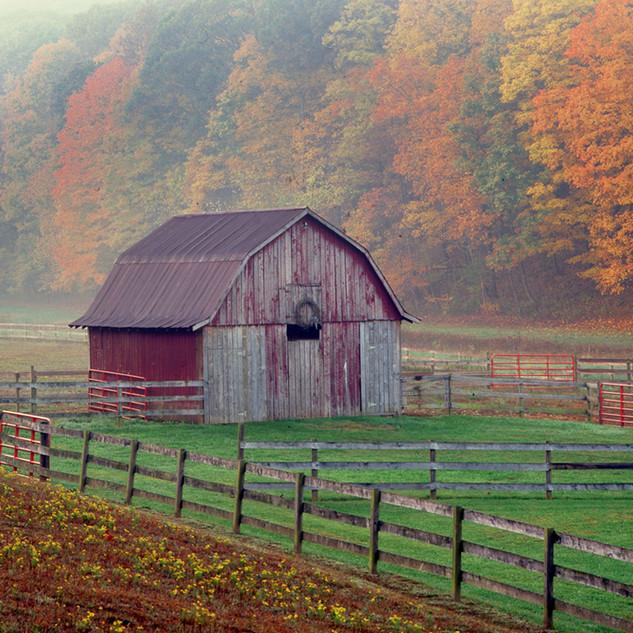 Barn in Autumn Scene