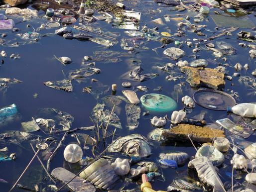 Why Zero Waste?