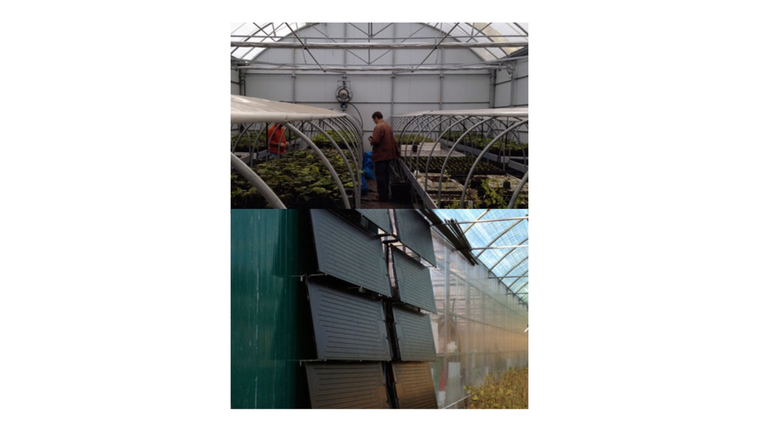 Energie SHW: Greenhouse (heating of red fruit benches)