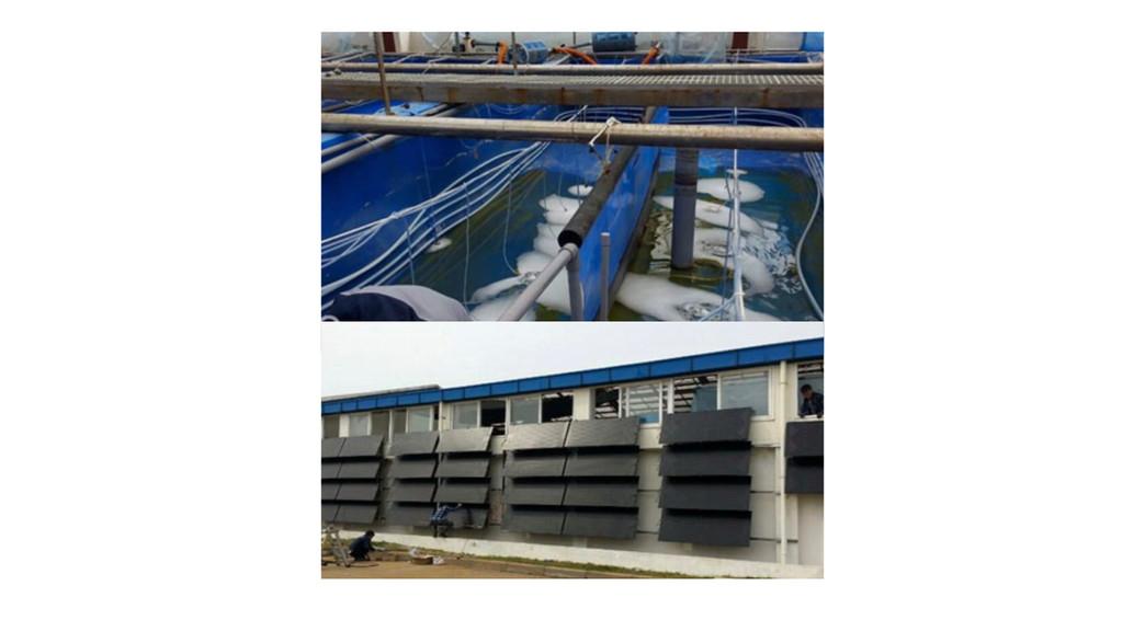 Energie SHW: Shrimp farm (160,000 ltr / 42.000 gal)