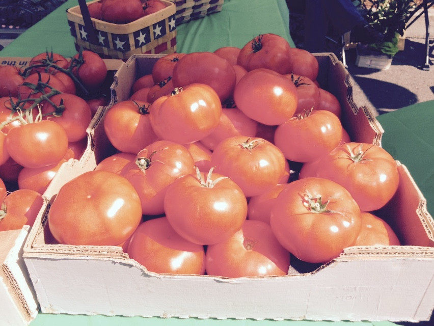 fresh tomatoes at the Lincoln CIty Farmers Market