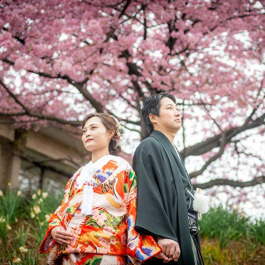 wasou029.jp#鹿児島#和装#色内掛#桜#吉野公園