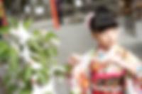 神社で753・七草の写真をおしゃれに残しませんか?