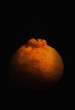 photography vegetables art Orange