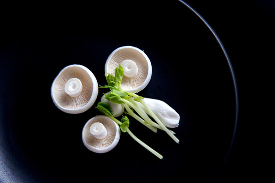 hotography vegetables art Mushroom.