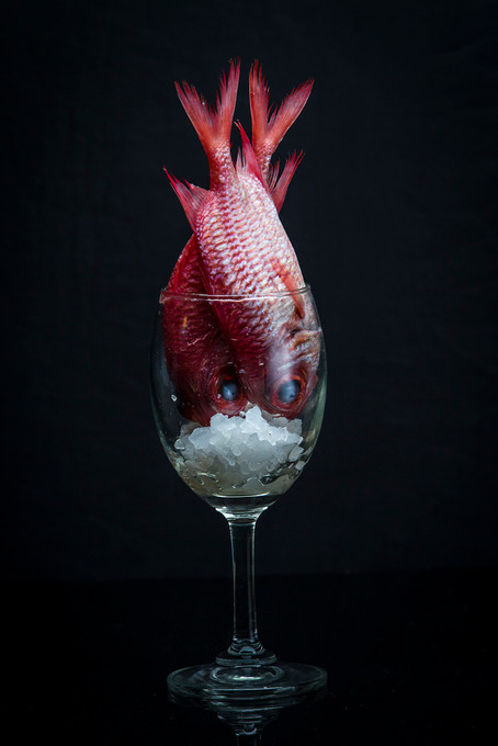 Photographer,Food art concept in Bangkok,Thailand.