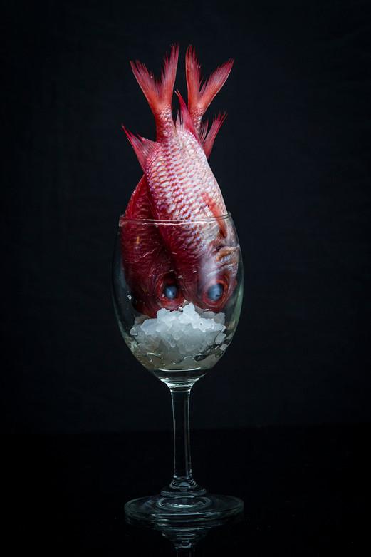 Photographer,Food art concept in Bangkok,Thailand.