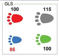 GLS-squre-lameness-score-native.jpg