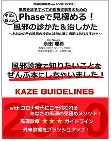 KAZEGUIDE.png