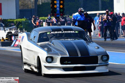 Mustang Gainesville 2