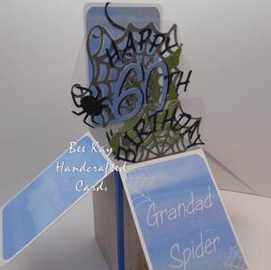 Grandad Spider!