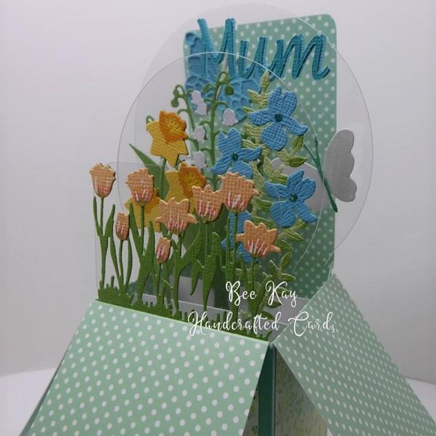 Spring flowers for Mum
