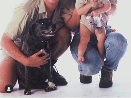 Happy International Dog Day!!