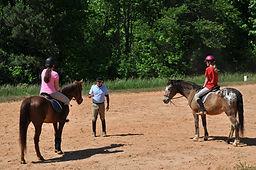 horseback riding dressage clinic