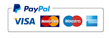 PayPal-Hussey-Criminal-Defense-Law.png