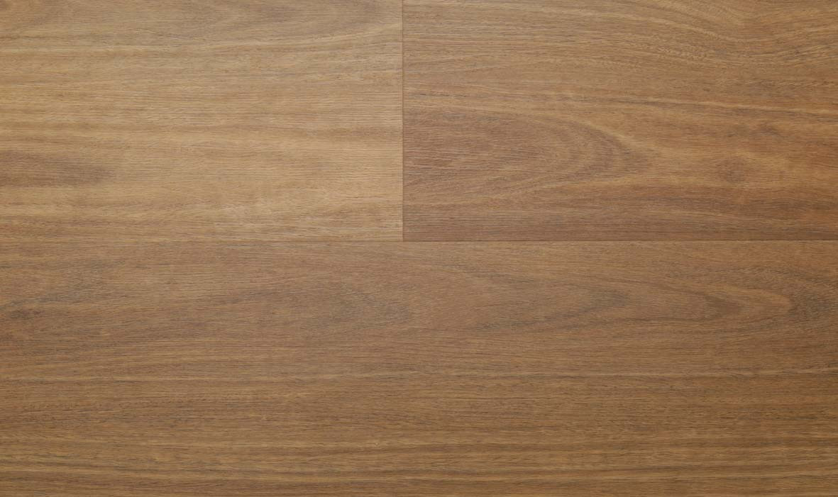 Fusion Elite - Southern Spotted Gum