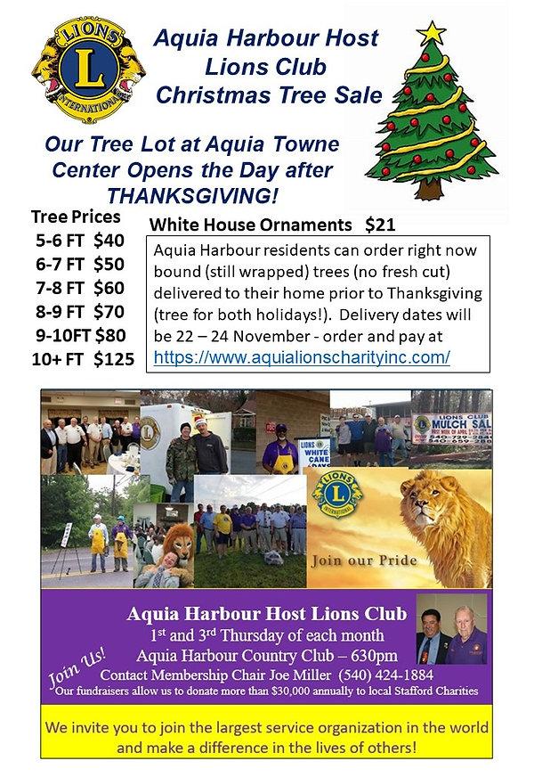 Christmas Ad3 Nov 10-08.jpg