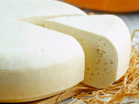Briga de bactérias no queijo minas frescal