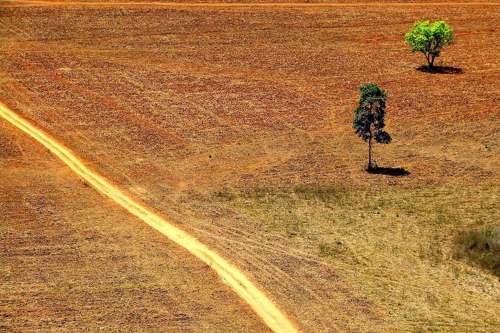 Amazônia desmatada