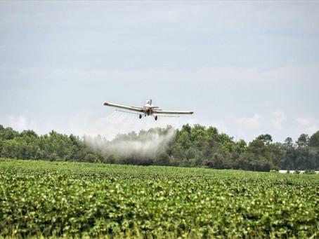 Brasil: terra livre do clorpirifós, banido nos EUA e UE