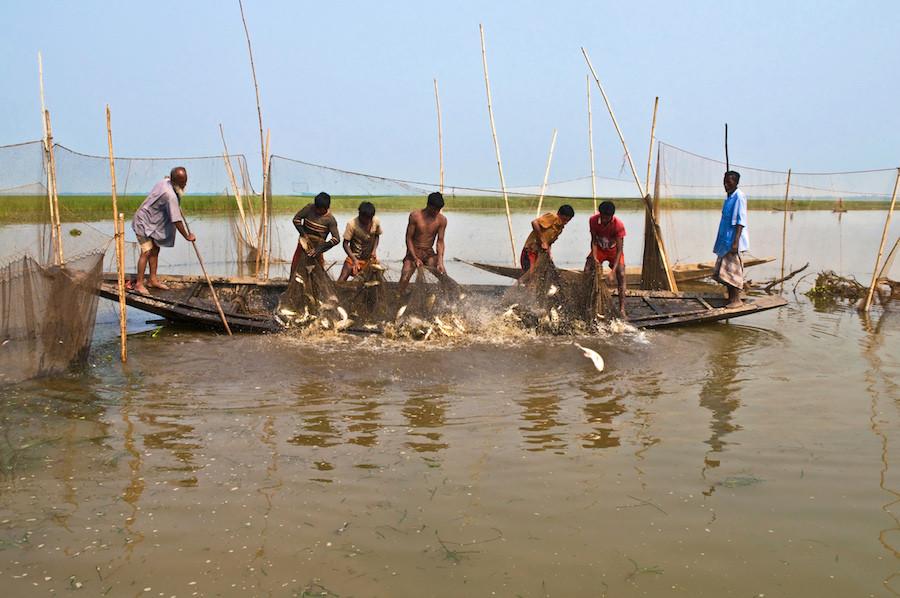Pescadores de Bangladesh