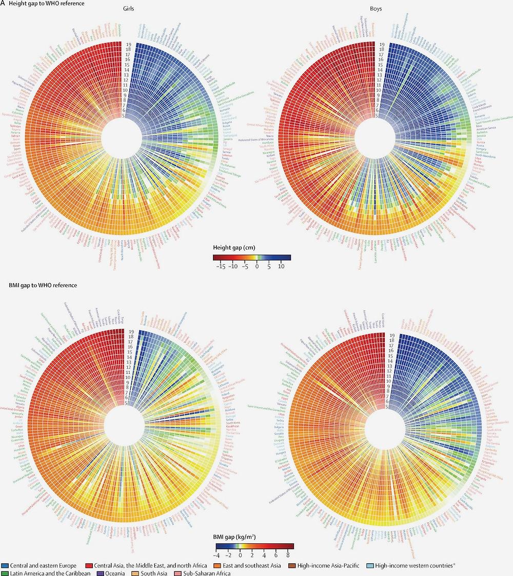 Infográfico de disparidades de altura e IMC