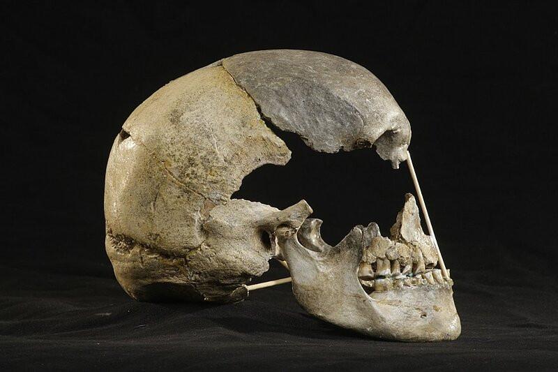 Fóssil de mulher da espécie Homo sapiens com ancestrais neandertais