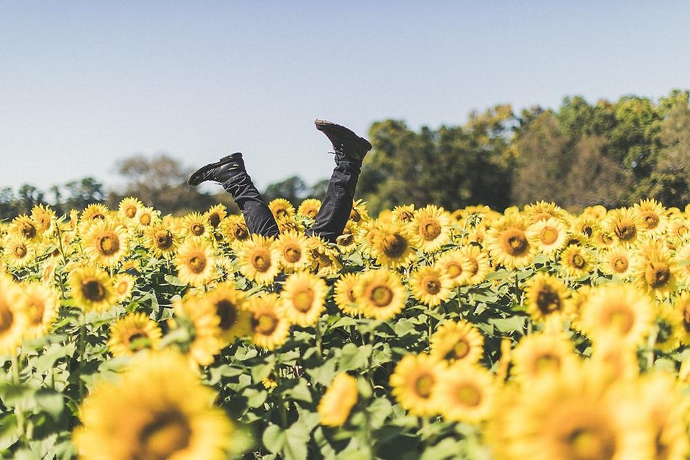 Campo de flores e uma pessoa de ponta-cabeça