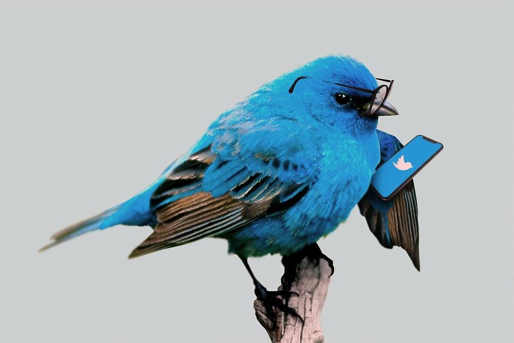 Ilustração do Twitter