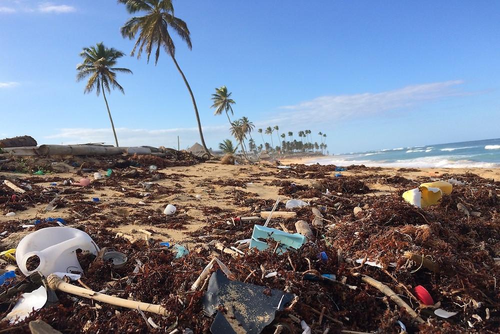 Praia invadida por plástico em Punta Cana