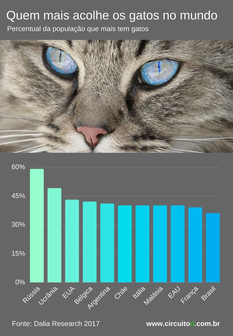 Infográfico com ranking dos país que mais têm gatos