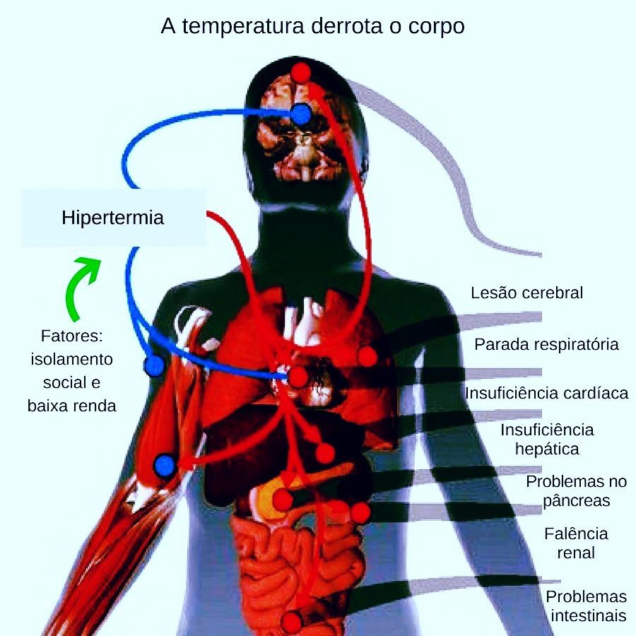 Como o calor excessivo derrota o corpo