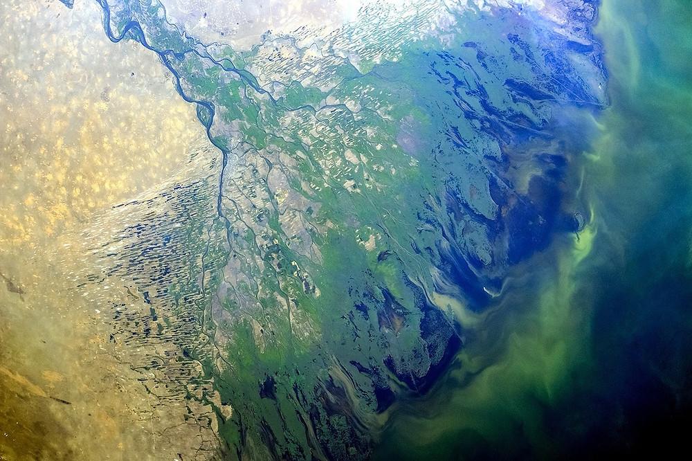 Delta do Volga