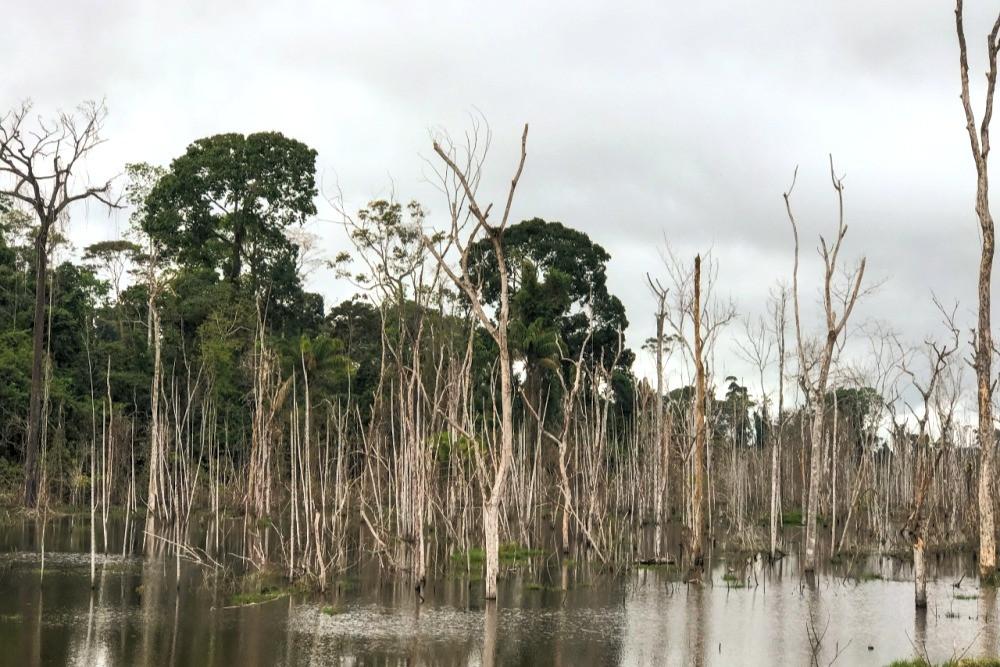 Reservatório de Belo Monte
