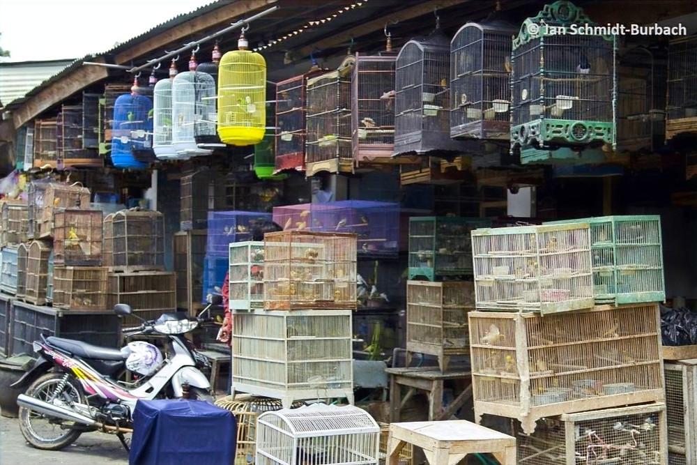 Mercado de Malang