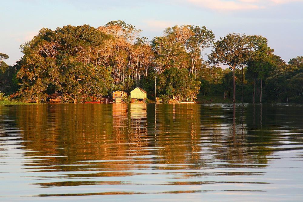 Amazônia no Brasil