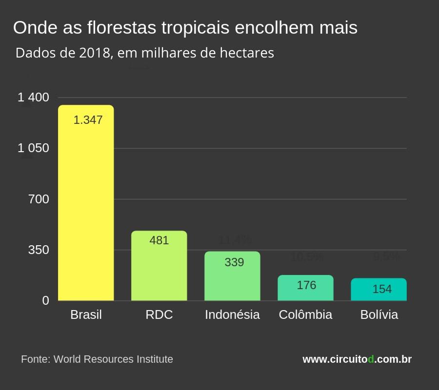 Tabela com as maiores perdas de florestas tropicais