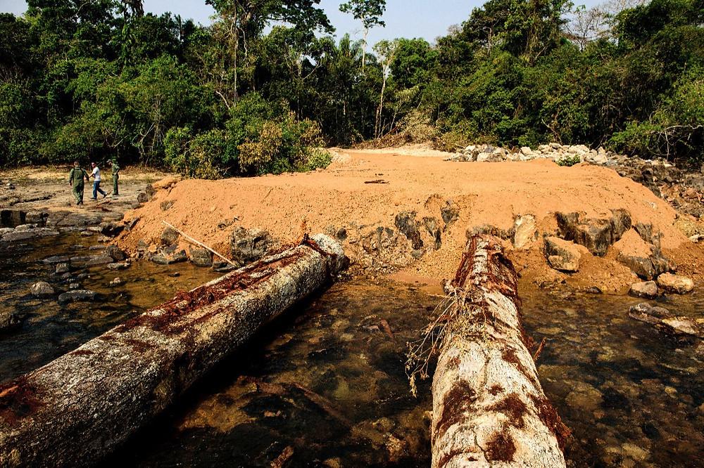 Desmatamento da Amazônia na área do MT
