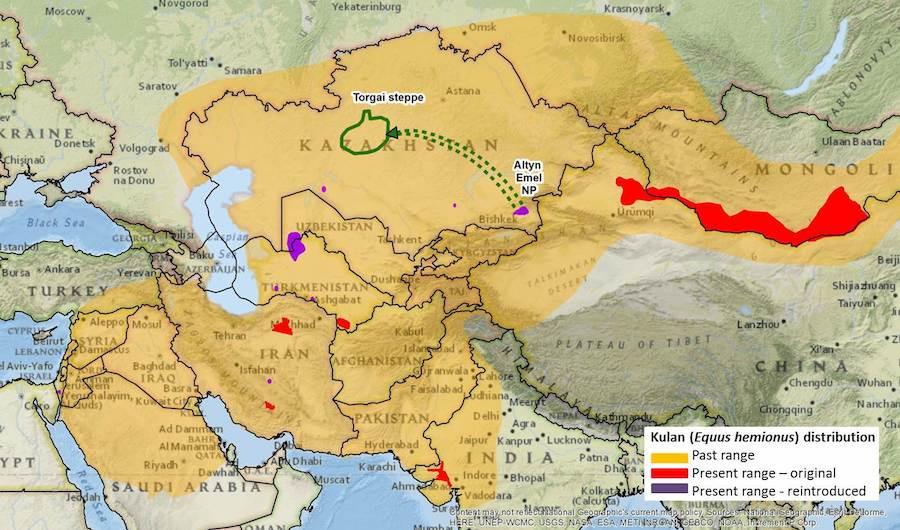 Mapa do território do kulan no passado e agora