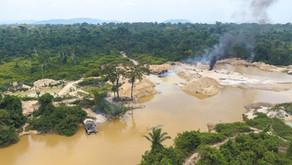 O ouro é uma maldição para o povo kayapó